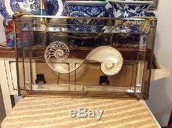 Stained Glass Window Bevels Nautilus Sea Shell Beach Ocean Suncatcher Panel